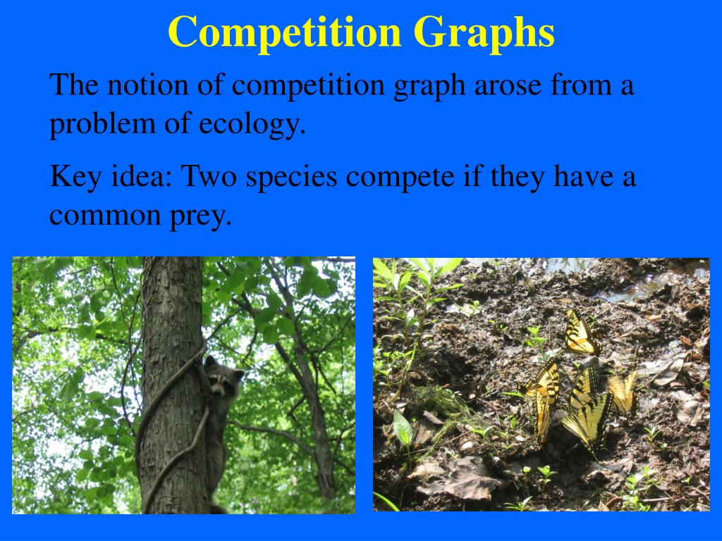 Competition Graphs