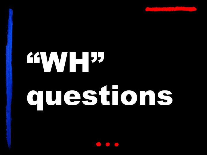 wh questions n.