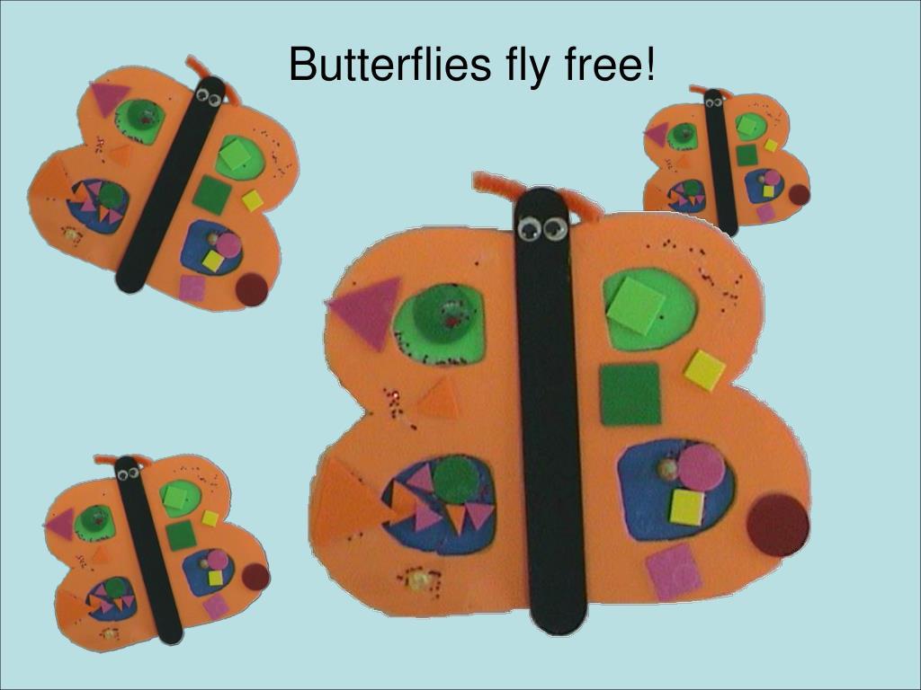 Butterflies fly free!