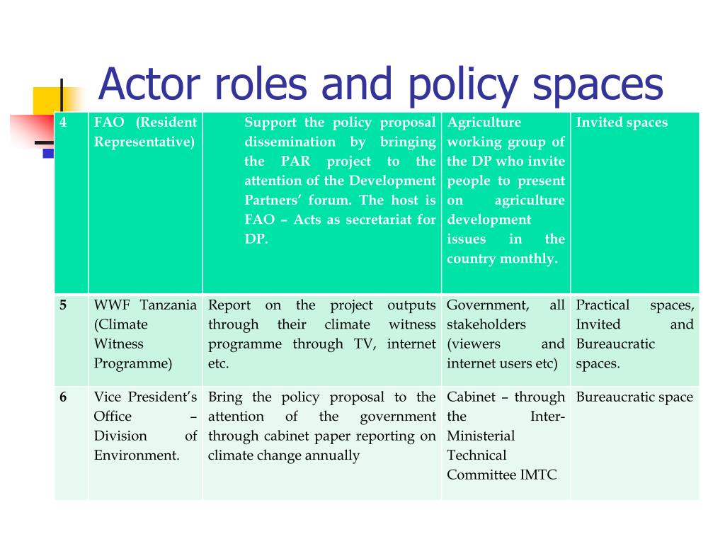 Actor roles and policy spaces