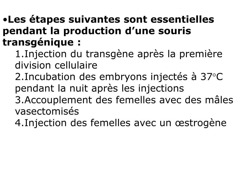 Les étapes suivantes sont essentielles pendant la production d'une souris transgénique:
