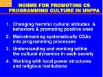 norms for promoting cs programming culture in unfpa