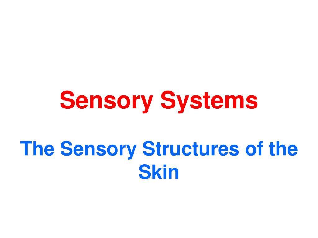 sensory systems l.