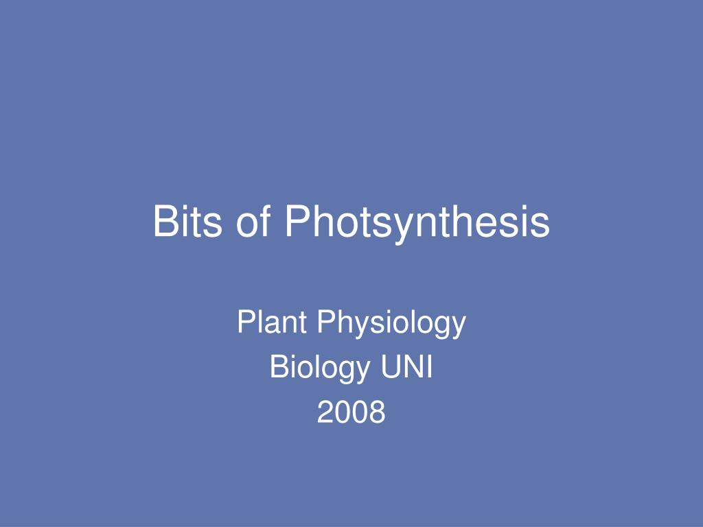 Bits of Photsynthesis