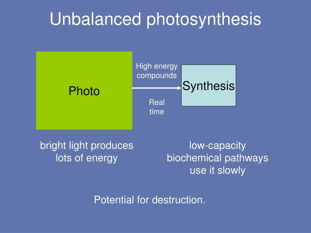 Unbalanced photosynthesis