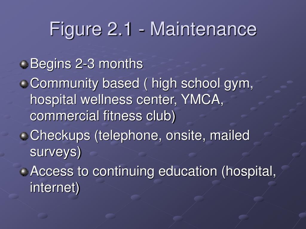 Figure 2.1 - Maintenance