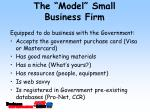 the model small business firm28