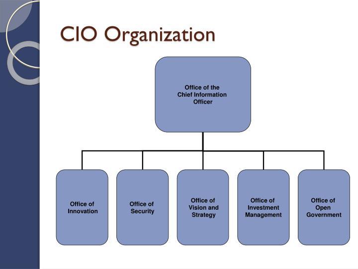 Cio organization