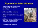 exposure to avian influenza