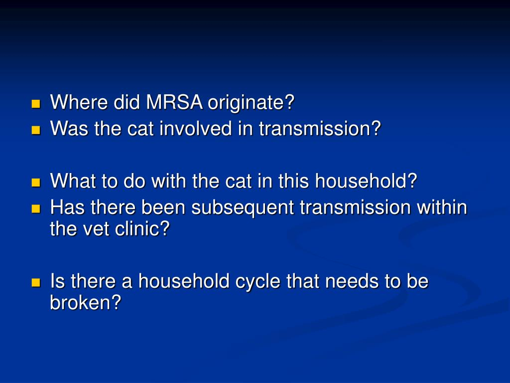 Where did MRSA originate?