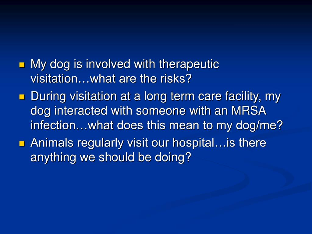 My dog is involved with therapeutic visitation…what are the risks?
