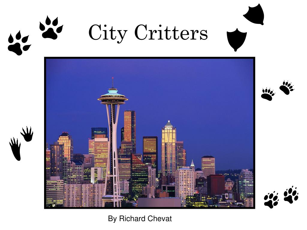 city critters l.