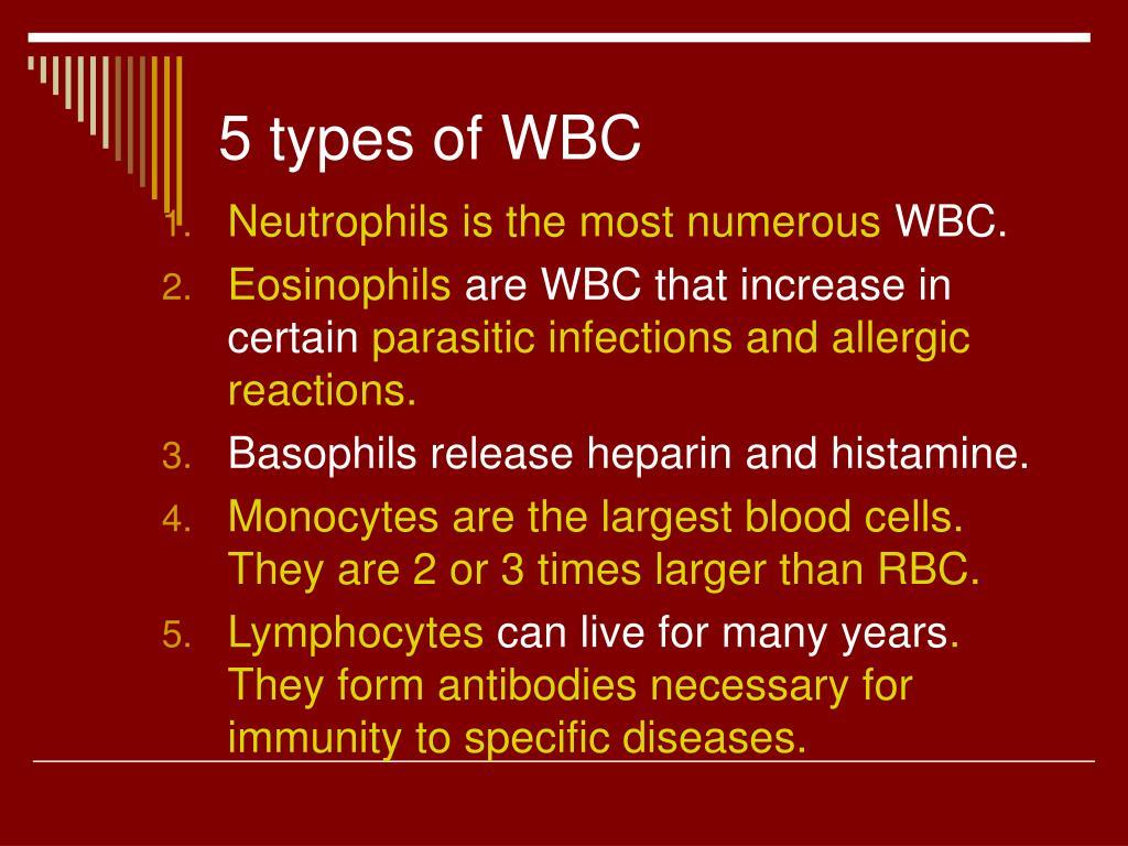 5 types of WBC