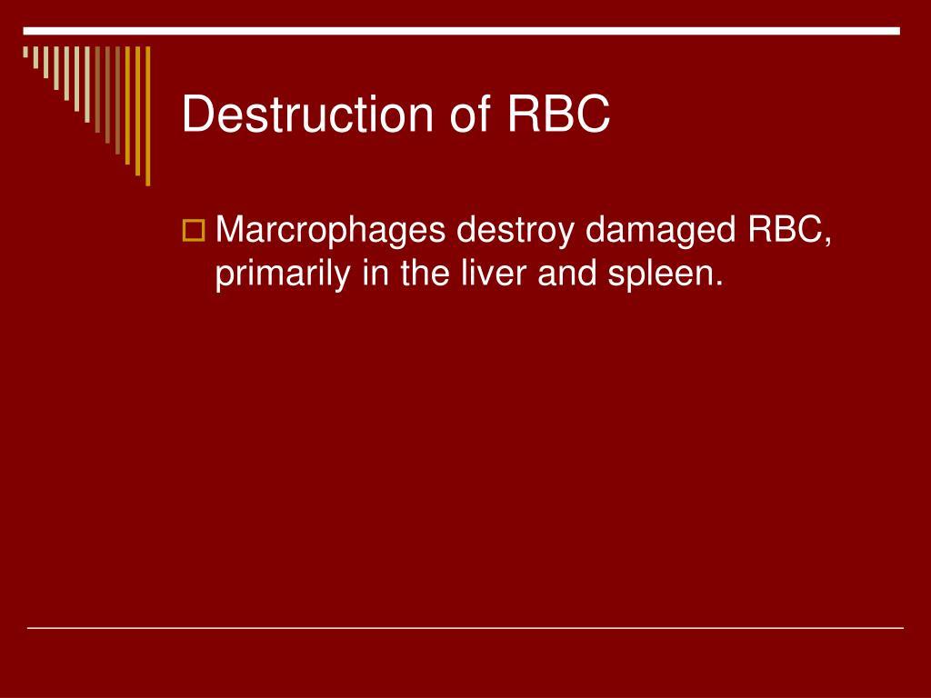 Destruction of RBC