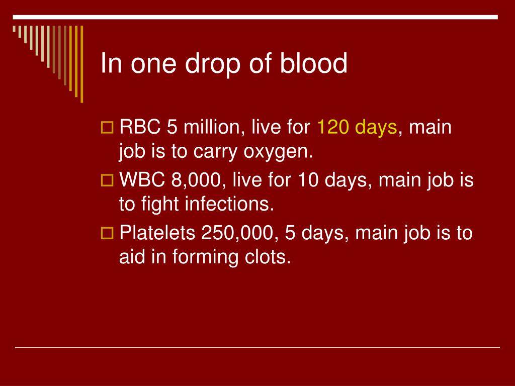 In one drop of blood