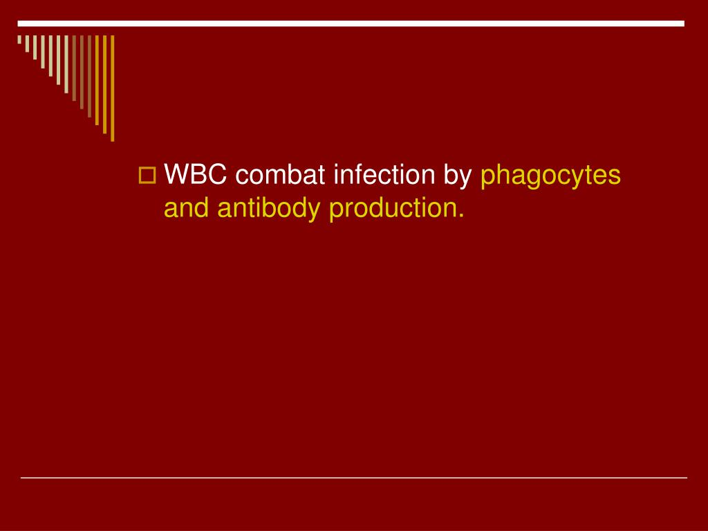 WBC combat infection by