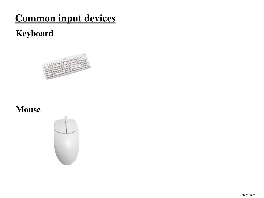 Common input devices