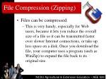file compression zipping
