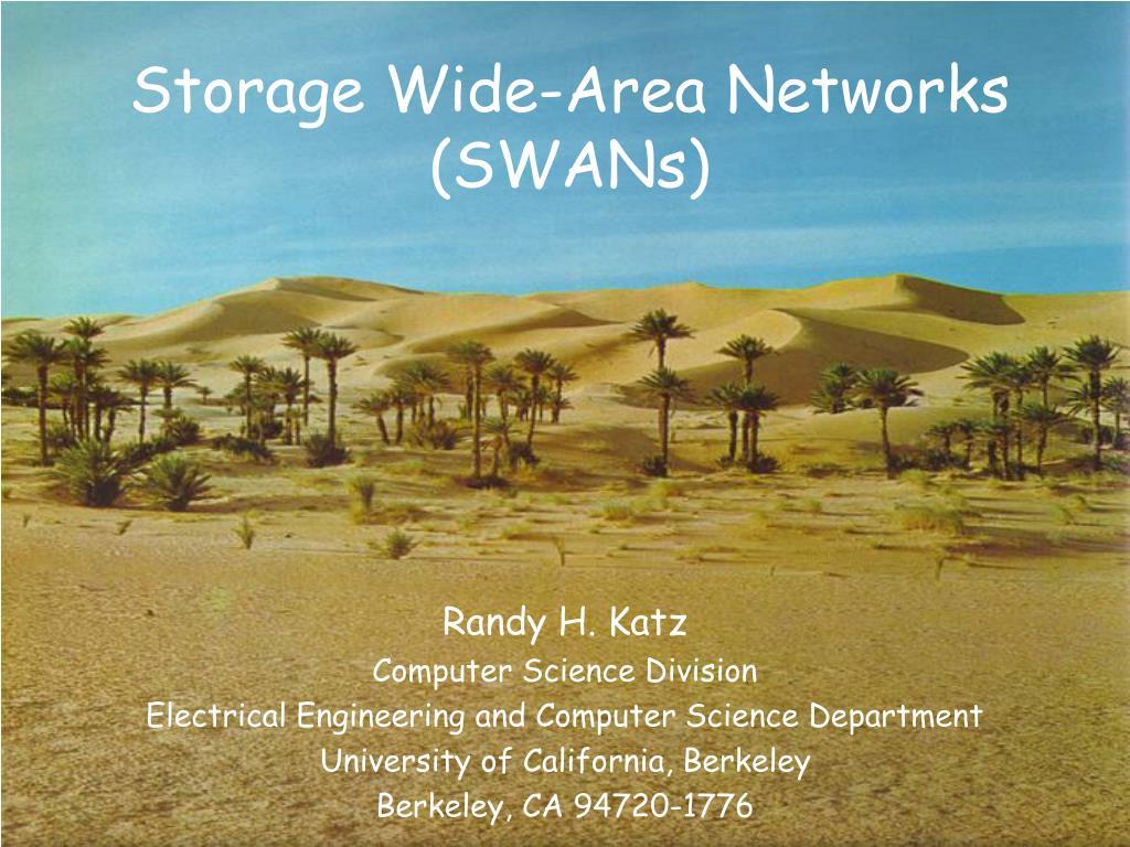 storage wide area networks swans l.