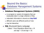 beyond the basics database management systems