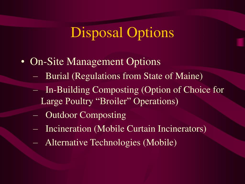 Disposal Options