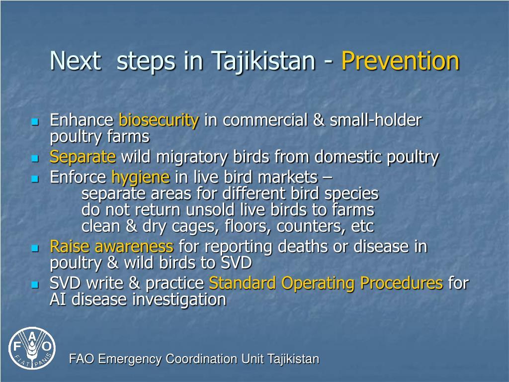 Next  steps in Tajikistan -