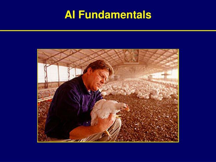 Ai fundamentals