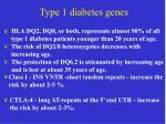 type 1 diabetes genes