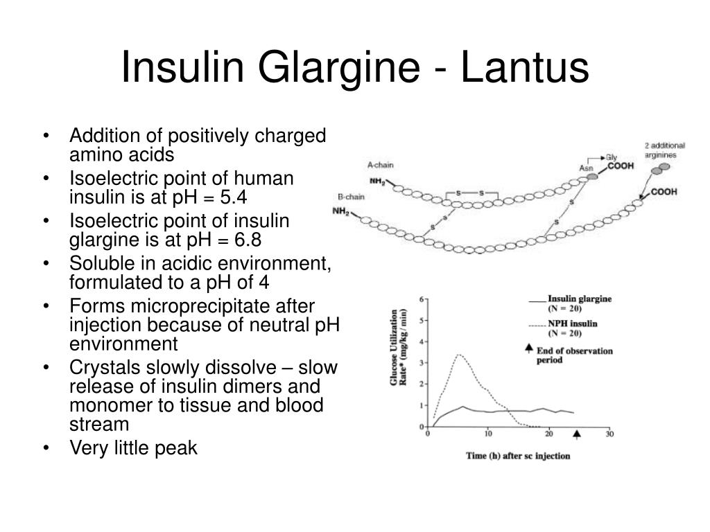 Insulin Glargine - Lantus