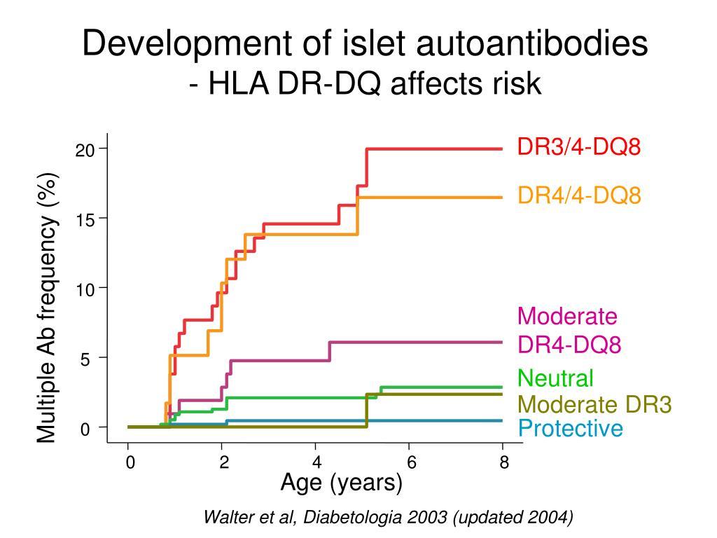 Development of islet autoantibodies