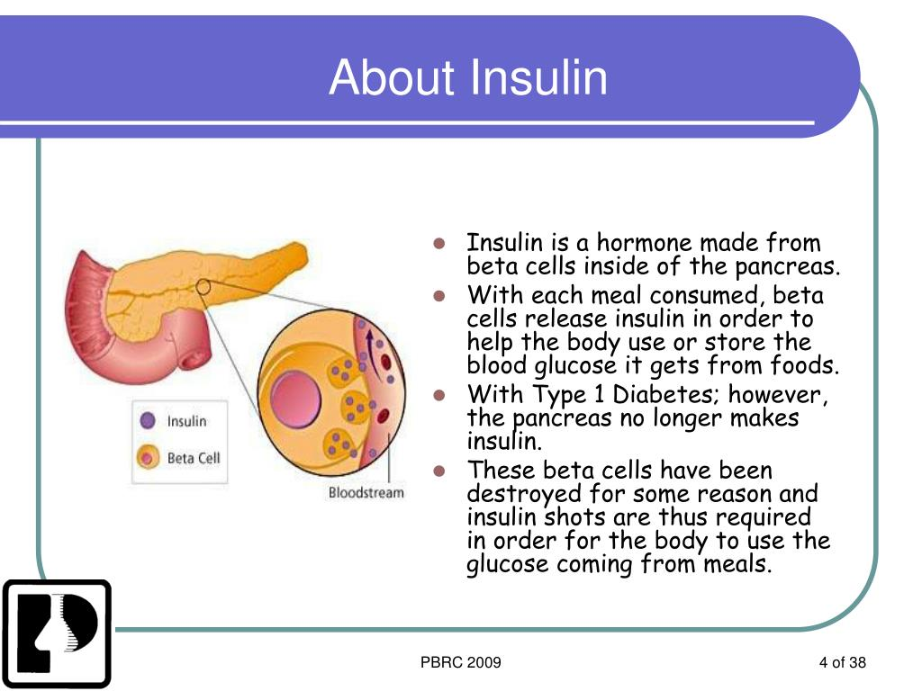About Insulin