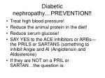 diabetic nephropathy prevention