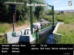 belt screen