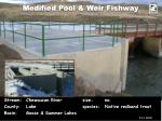 modified pool weir fishway