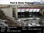 pool chute fishway