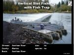 vertical slot fishway with fish trap
