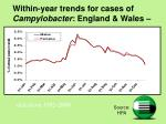 within year trends for cases of campylobacter england wales