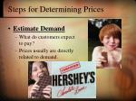 steps for determining prices21