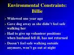 environmental constraints billie