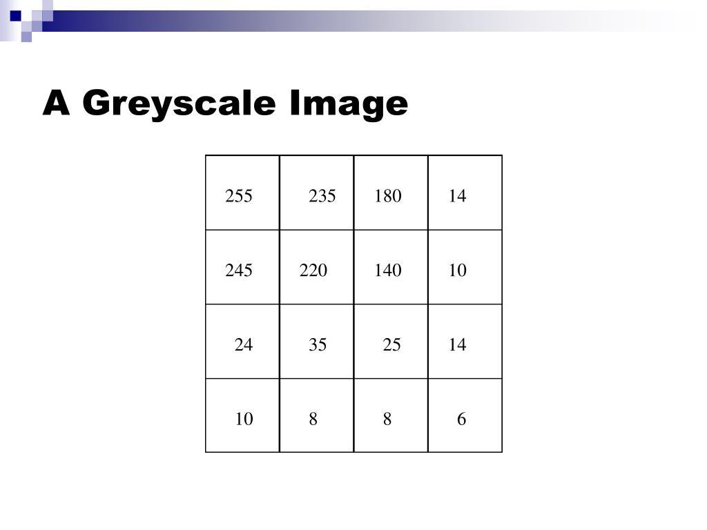 A Greyscale Image