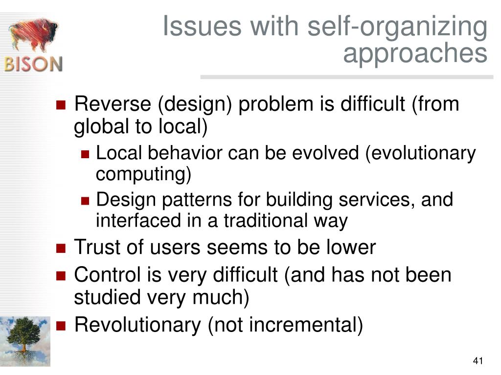 Issues with self-organizing approaches