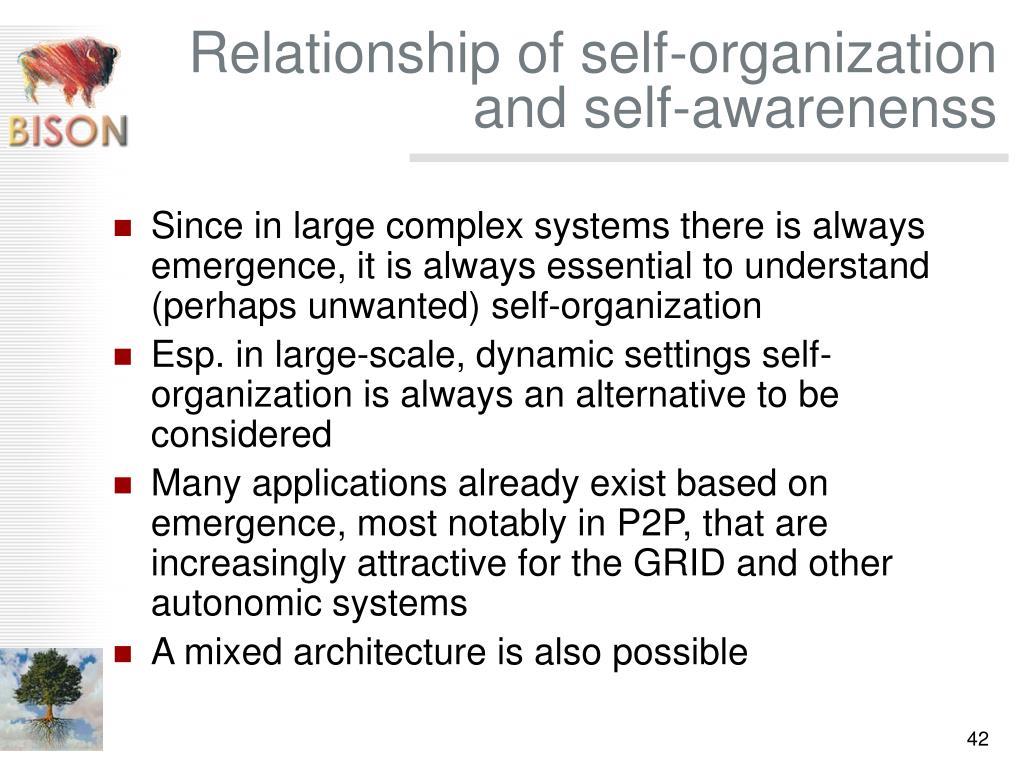 Relationship of self-organization and self-awarenenss