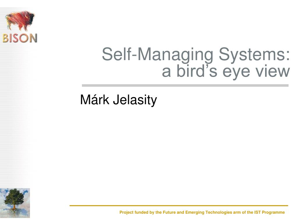 self managing systems a bird s eye view l.