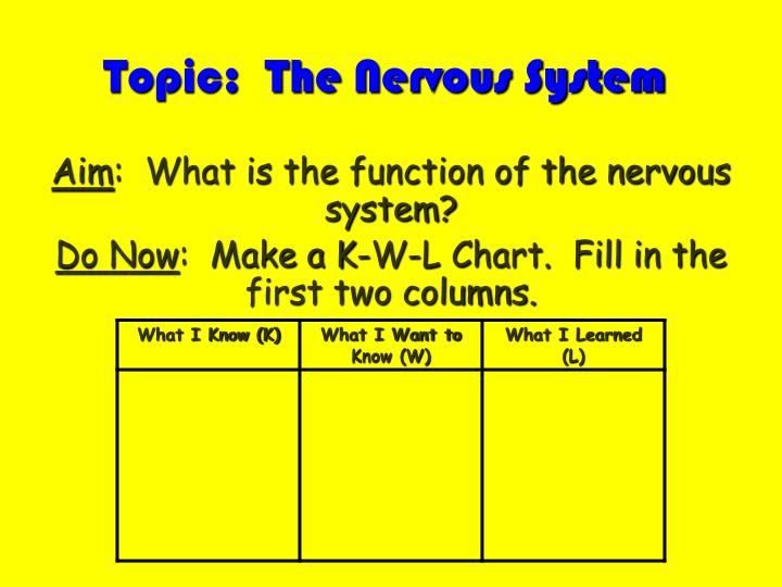 Topic the nervous system