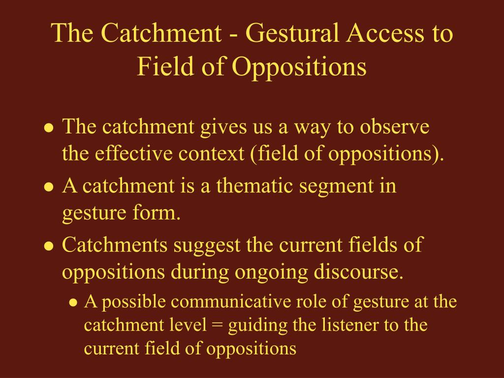 The Catchment - Gestural Access to Field of Oppositions