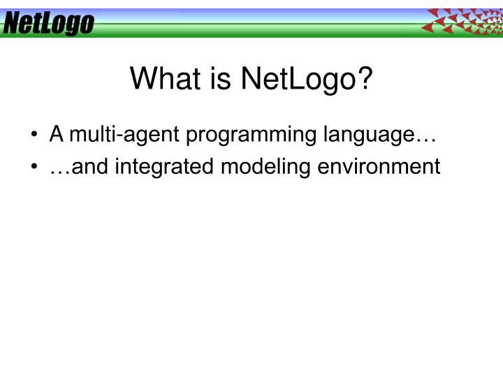 What is netlogo