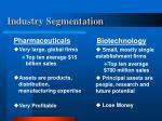 industry segmentation