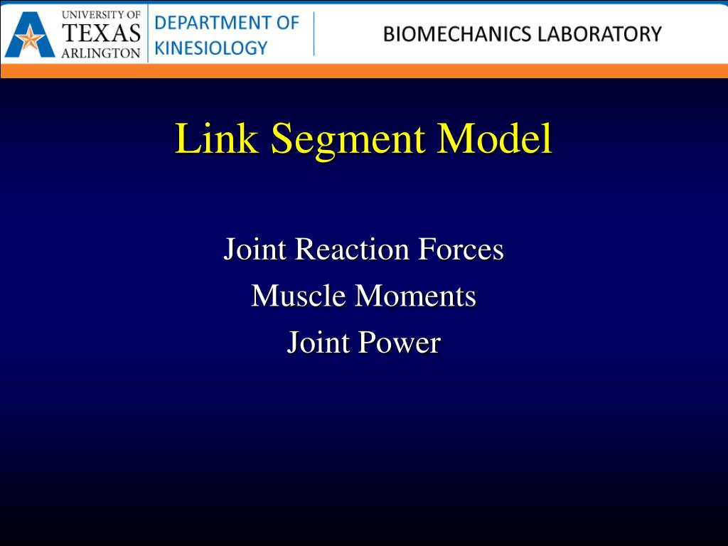 Link Segment Model