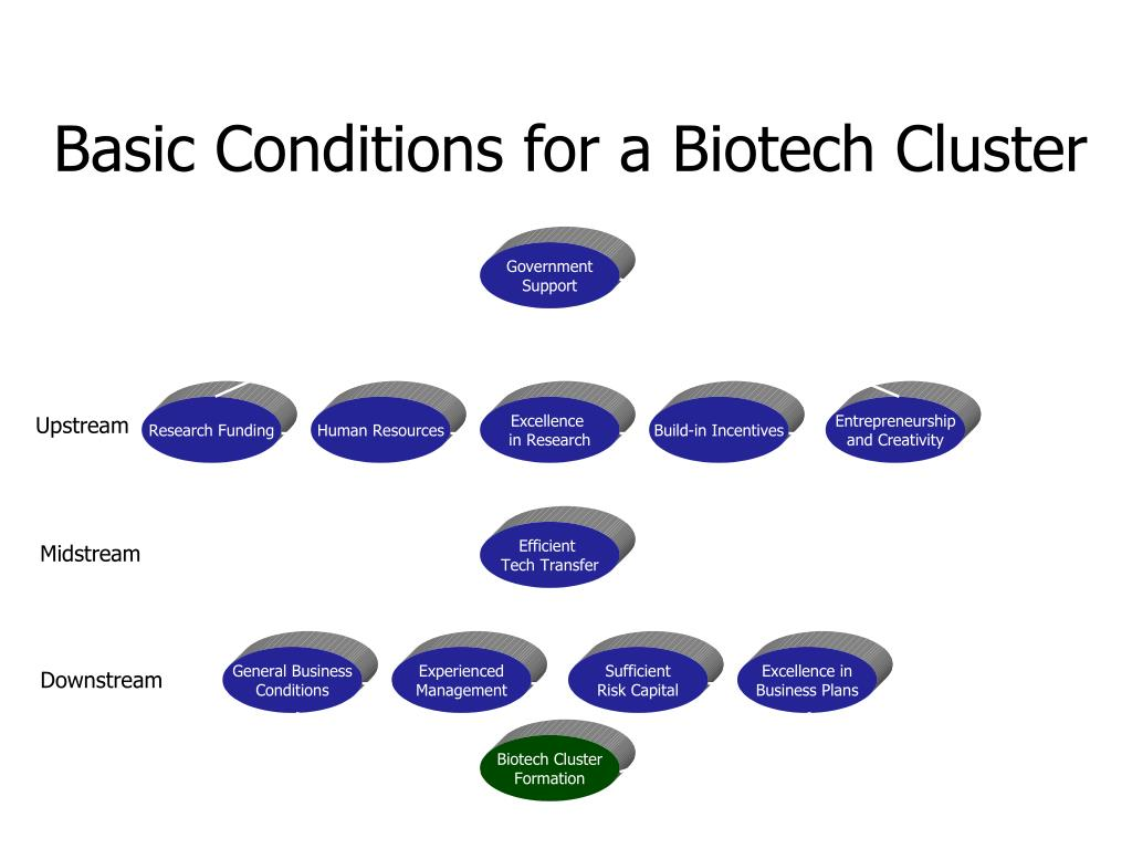 Basic Conditions for a Biotech Cluster