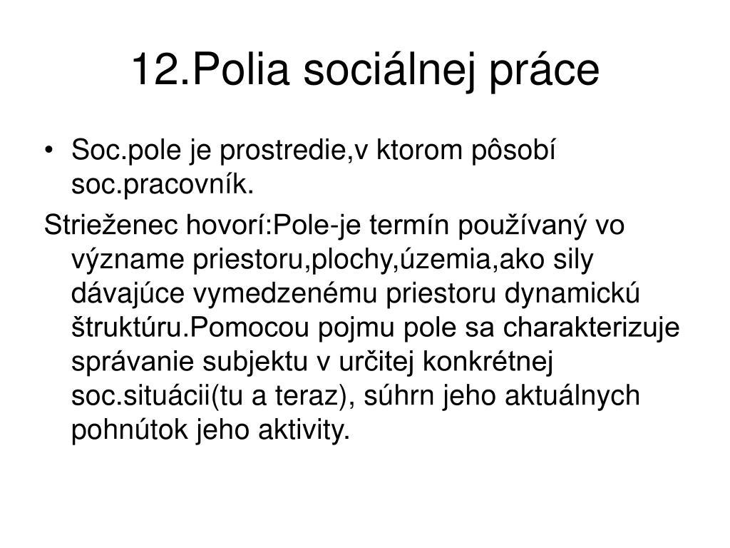 12.Polia sociálnej práce